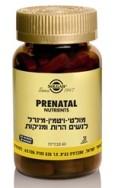 prenatal_web_1-3