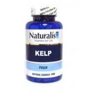 naturalis_kelp_hadmaya-225x225