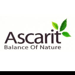 Ascarit